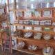 Lake Atitlan Herbal Medicine Guatemala