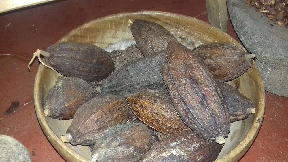 Lake Atitlan Chocolate - Cocoa Beans